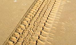 vehicle tyre tracks on Fraser Island