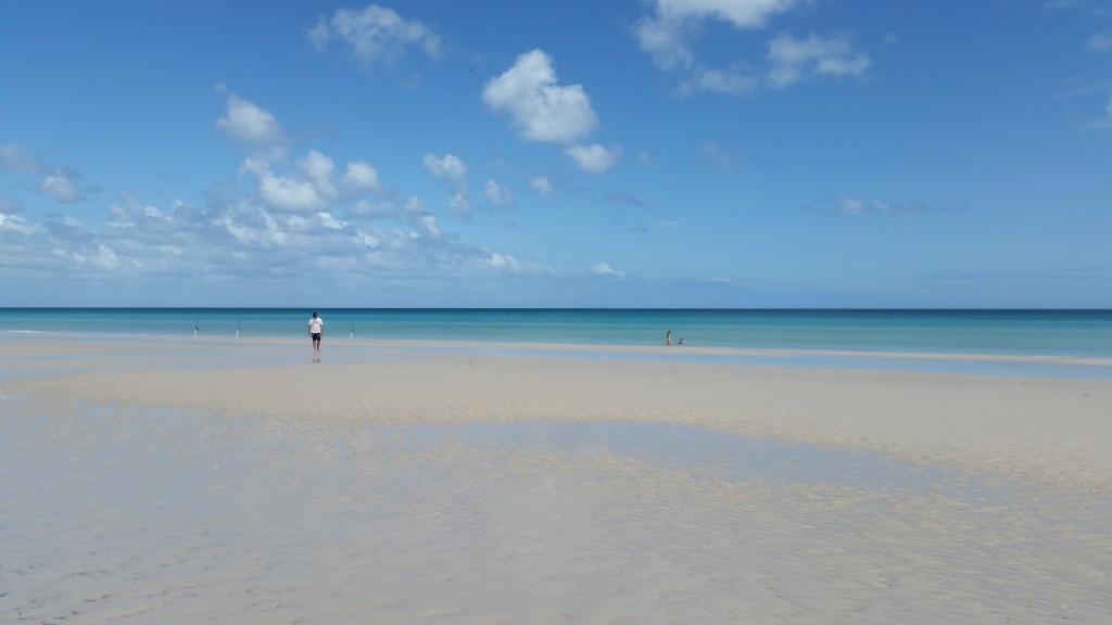 Graet Sandy Cape low tide