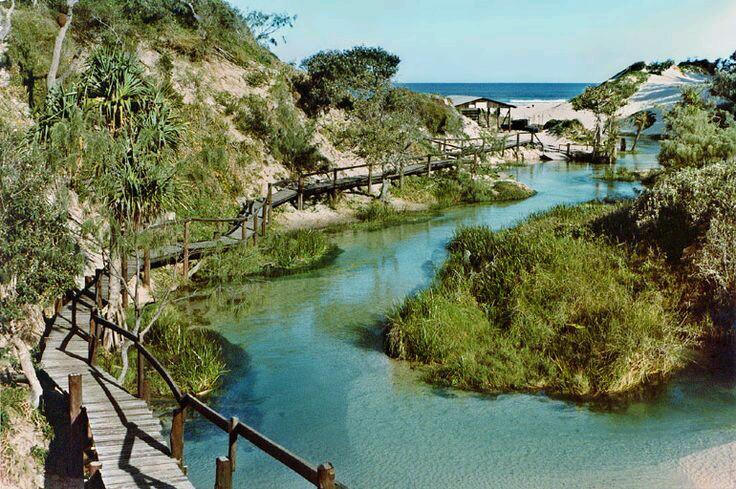 Beautiful Eli Creek Fraser Island