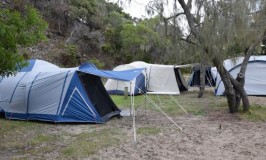 Fraser Island camping at Waddy