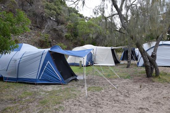 Waddy point camping
