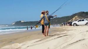 Tailor fishing
