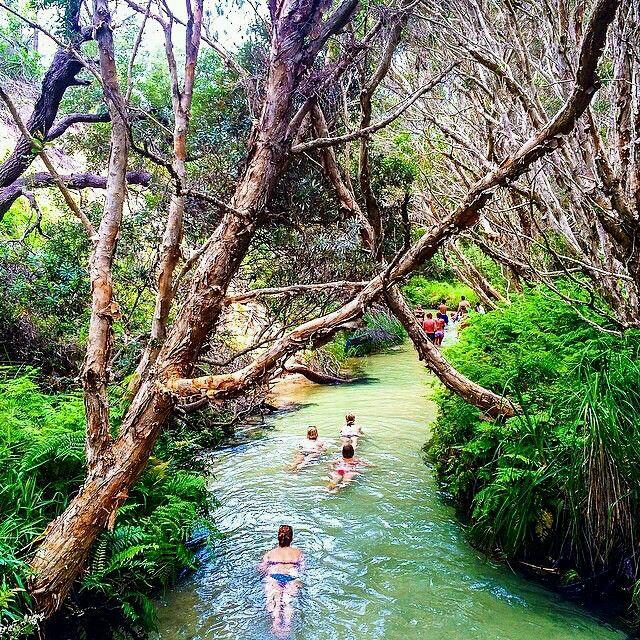 Swimming (floating) down eli creek