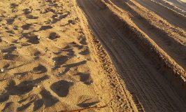 Sand driving Track on Fraser Island