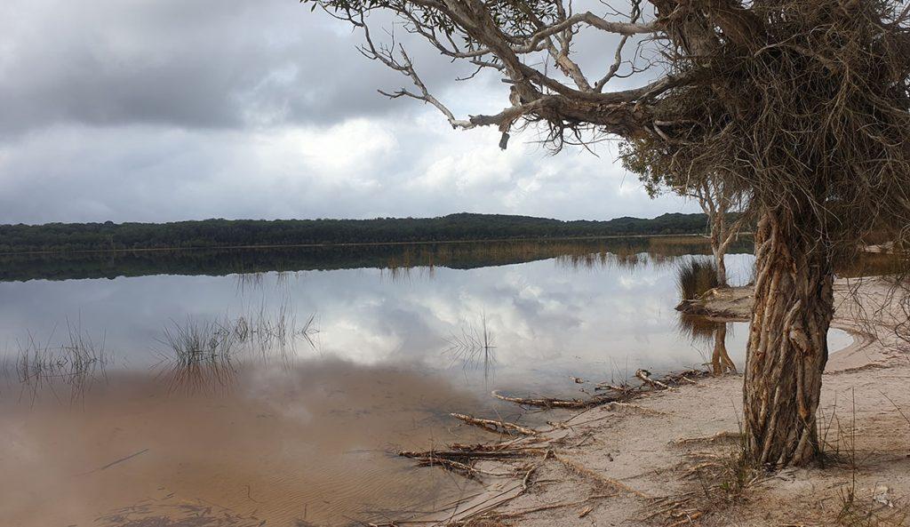 A lovely spot at Lake Boomanjin