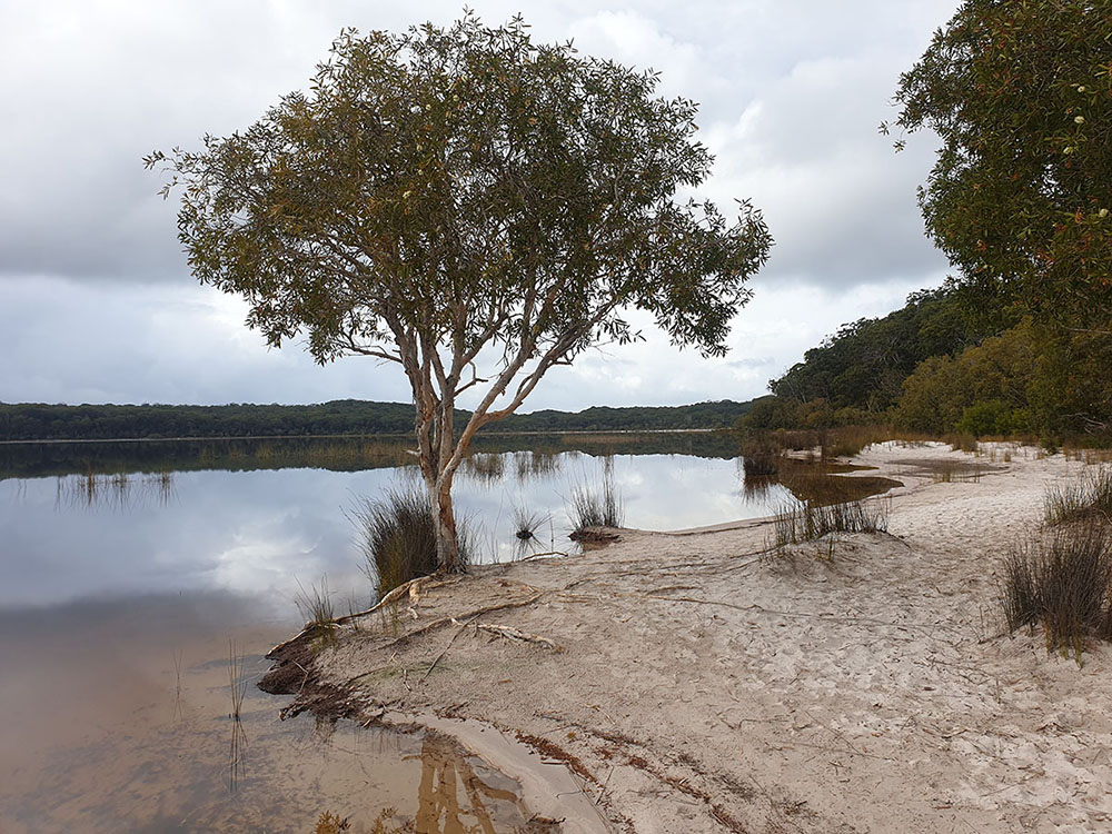 A scenic view of Lake Boomanjin