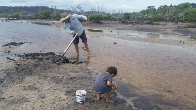 Pumping for Yabbies