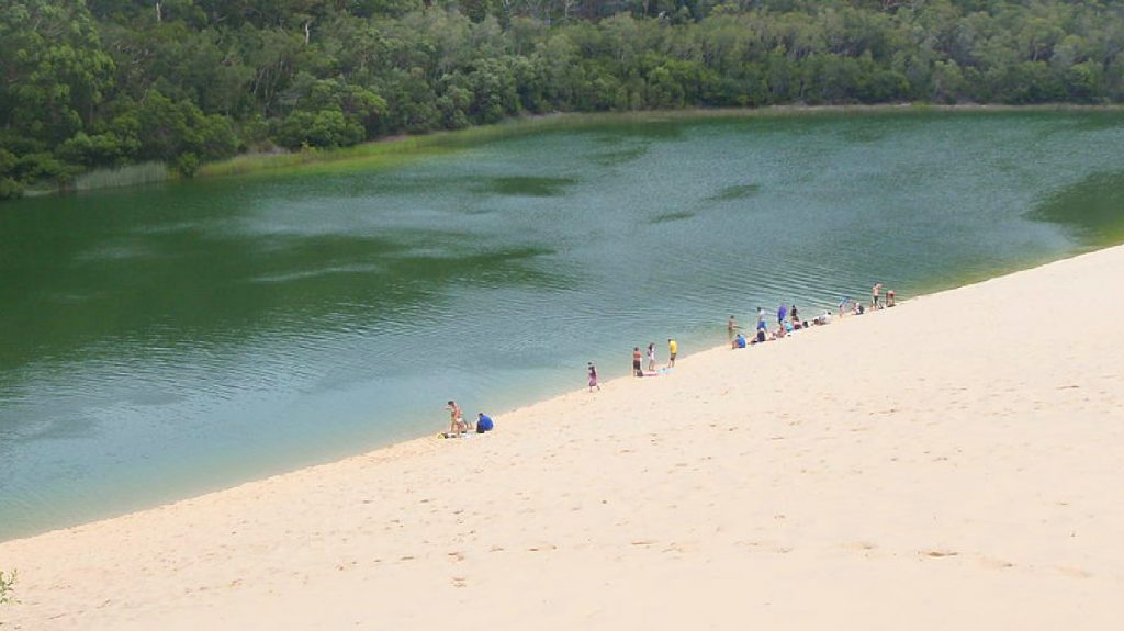 The dunes at reach Lake Waddy