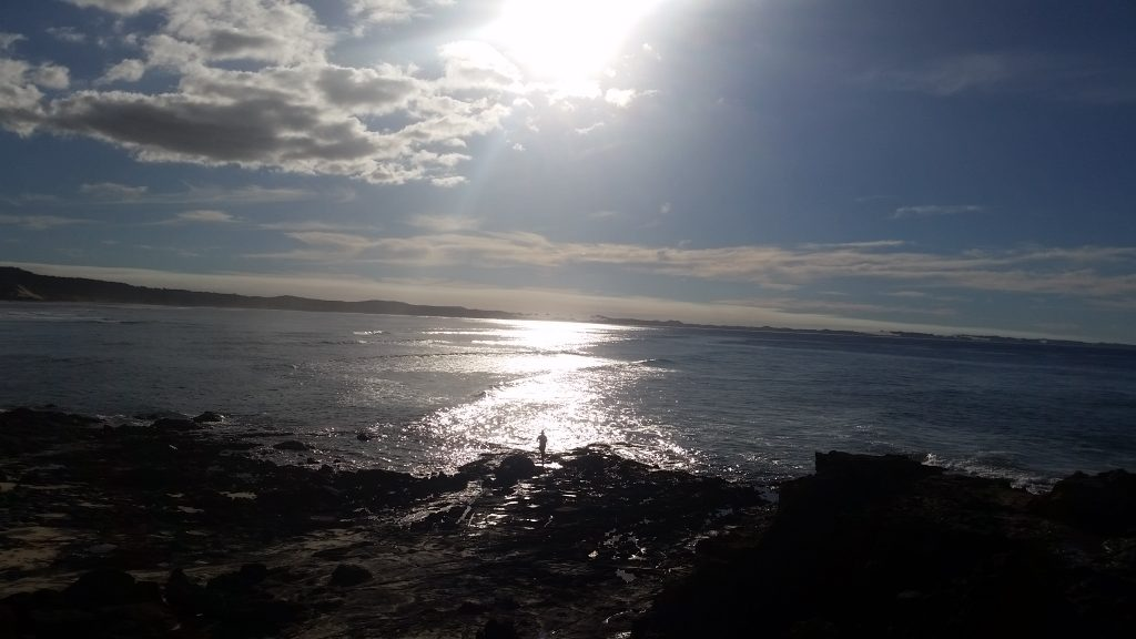 waddy point from the rocks